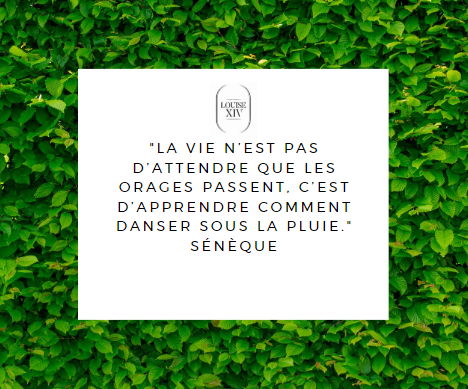 CITATION DU JOURS !
