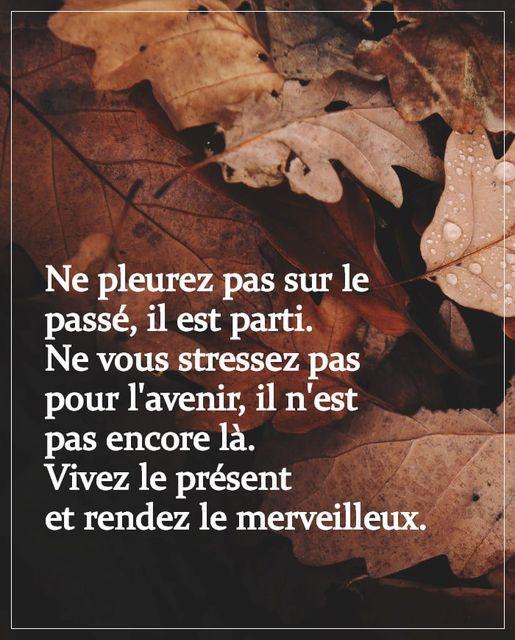 #LA PHRASE DU JOUR #